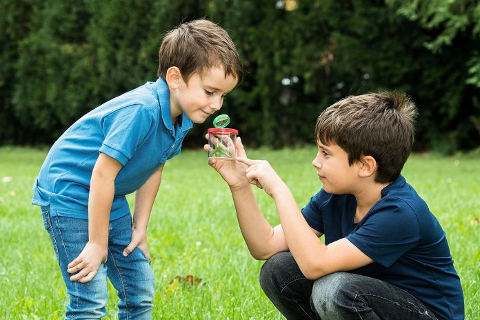 Kinder lernen Tierschutz