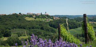 Themenwege in der Steiermark